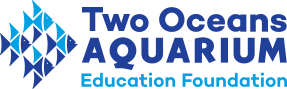 Two Oceans Aquarium Education Foundation